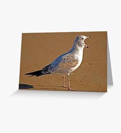 GET OFFA MY BEACH Greeting Card
