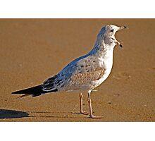 GET OFFA MY BEACH Photographic Print