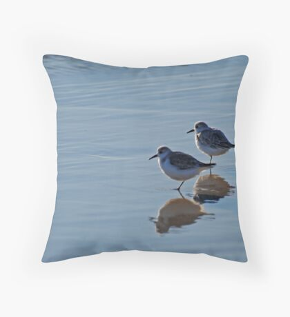 Piping Plovers in Salvo Throw Pillow