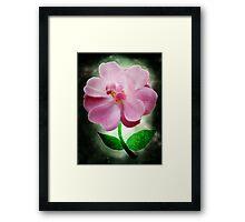 Flowering knowledge Framed Print