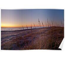 Beach at Dawn Poster