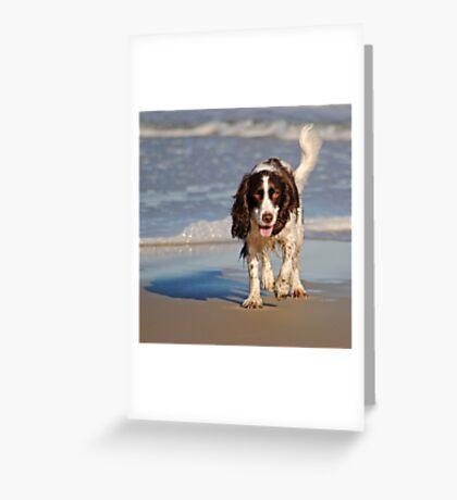 Beach Pup Greeting Card