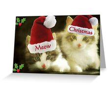 Meow Meow Christmas From Us!!! © Greeting Card