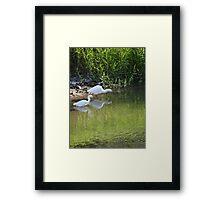 Peaceful fishing - Pescando en paz Framed Print