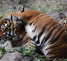 I Luv Mommy! by Gail Falcon