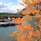 Fall at Lake Minnewanka by Andy Newham