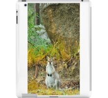 Tenterfield Wallaby iPad Case/Skin