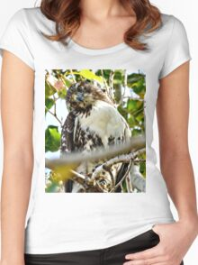 Red Tailed Hawk Women's Fitted Scoop T-Shirt