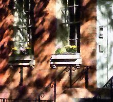 Window Boxes Greenwich Village by Susan Savad
