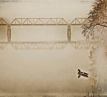 Quite Autumn by Krisztian Sipos