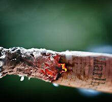 No smoking, please ! by Ulla Jensen
