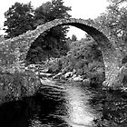 Carrbridge - B&W by Tom Gomez