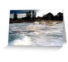 Shell Harbour Greeting Card