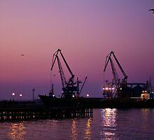 Port by Vasil Popov