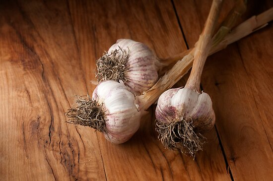 natural garlic  by marcelo de la torre