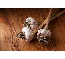 natural garlic  Photographic Print