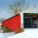 Country Christmas by Grinch/R. Pross