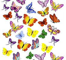 Riot of Many-Colored Butterflies by dorcas13