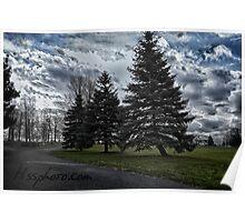 Green Pines Watertown N.Y.  Poster