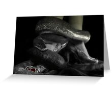 Python And Heels Greeting Card