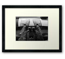 Brother Framed Print