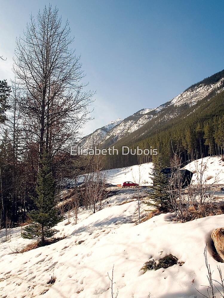 A little bit of Banff series #2 by Elisabeth Dubois