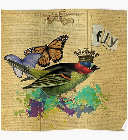 Vintage Bird Illustration Altered Art Collage Poster