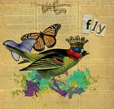 Vintage Bird Illustration Altered Art Collage by Gidget26