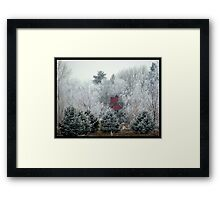 Hidden in the rough Framed Print
