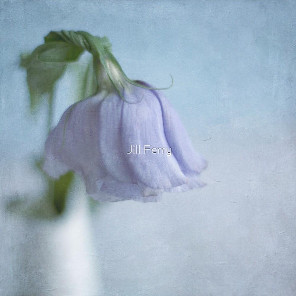 Lisianthus by Jill Ferry