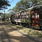 St Charles Ave. Streetcar line by AJ Belongia