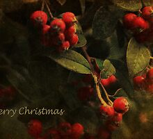 A Merry Berry Christmas by Lynda Heins