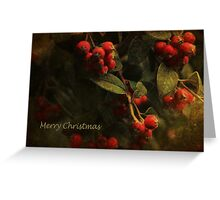 A Merry Berry Christmas Greeting Card
