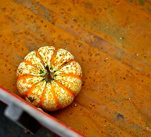 Tiny Pumpkin in a Wagon by Ginadg73