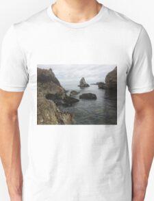 Shell Beach, CA T-Shirt