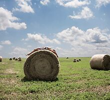 Roll in the Hay by Kelly Nicolaisen