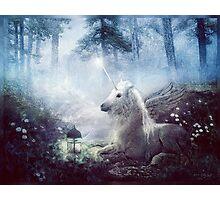 10 October: Faerie Folk Photographic Print