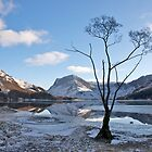 Frozen Buttermere by Annabelle Studholme