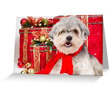 A nice Christmas for Cuddles Greeting Card