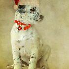 ~ Trixie's Christmas Wish ~ by Lynda Heins