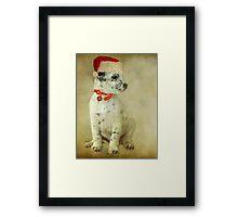 ~ Trixie's Christmas Wish ~ Framed Print