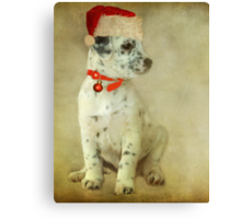 ~ Trixie's Christmas Wish ~ Canvas Print