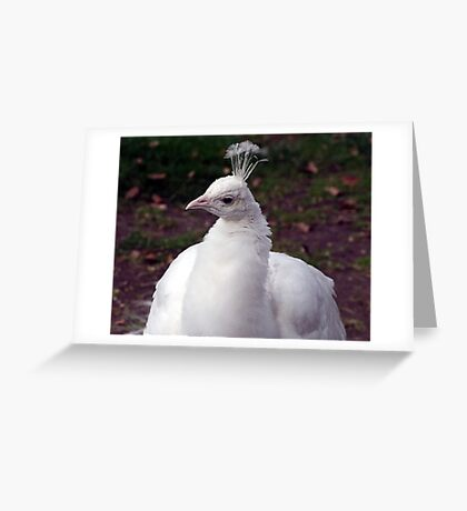 Well,Hello There.. Greeting Card