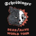 Schrdinger - DEAD/ALIVE World Tour by Andy Hunt
