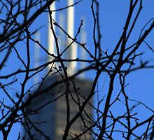 Sears Tower 2 by Roddy Fitzgerald