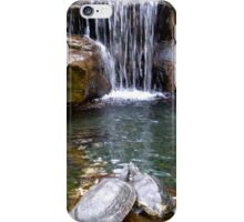 Lovely Turtle Waterfall iPhone Case/Skin