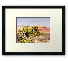 Looking Over the Cacti Framed Print