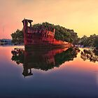 Shipwreck @ Homebush Bay by Arfan Habib