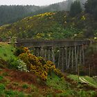 Viaduct - Taieri Gorge Railway by Alison Murphy