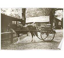 Australian Pioneer Village - Horse & Buggy Poster